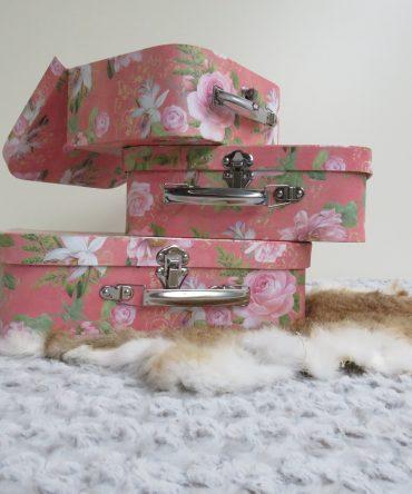 Decoratieve Koffers